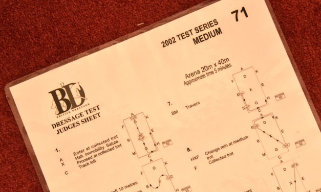 Medium 71 analysed — a short arena test that's not so sweet