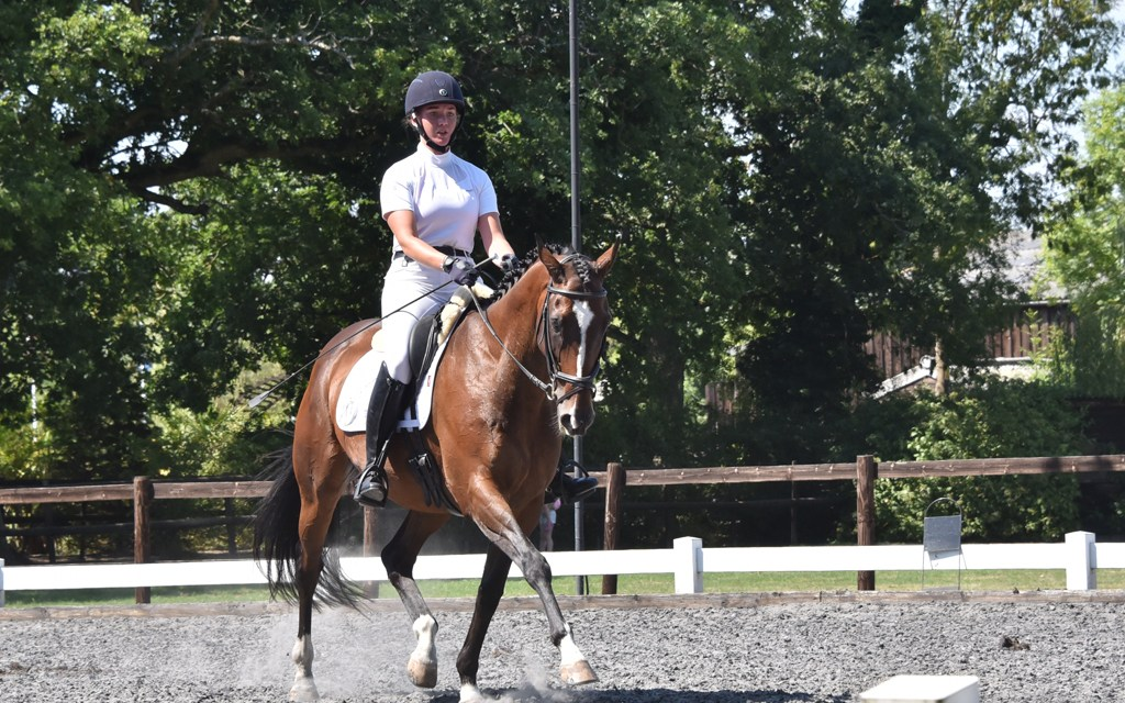 Dressage results: Oldencraig, Surrey, 3 August