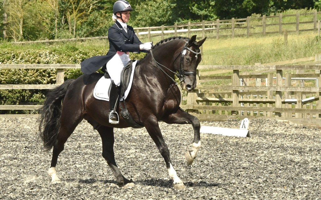 Dressage results: Colgate Dressage (Priory), Frensham, Surrey, 5 August