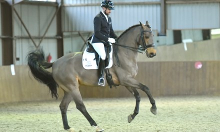 Dressage results: Step Aside (Belmoredean) 27 September