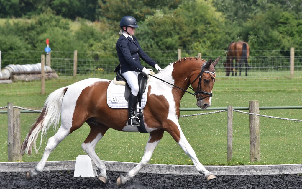 Dressage results: Parwood, Surrey, 7 September