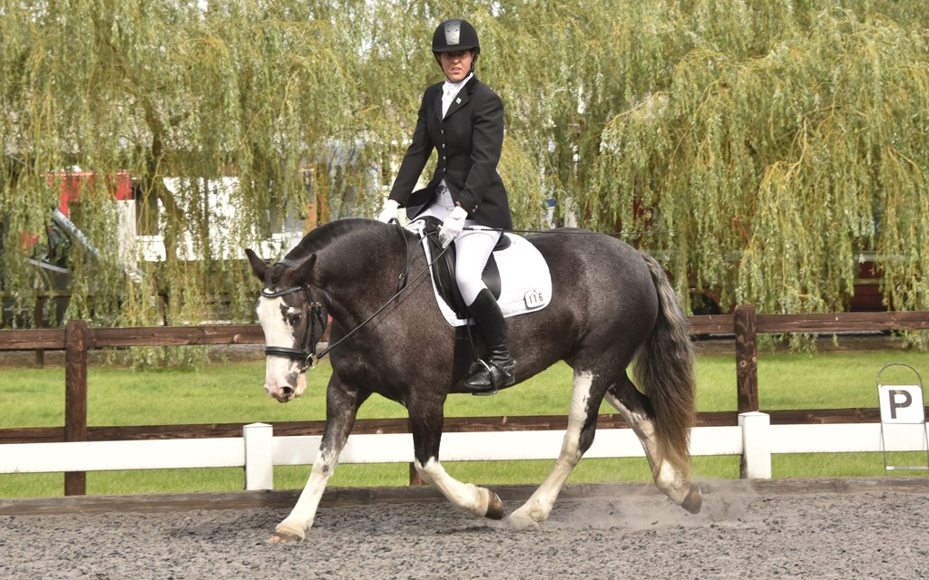 Dressage results: Oldencraig, Surrey, 14 September