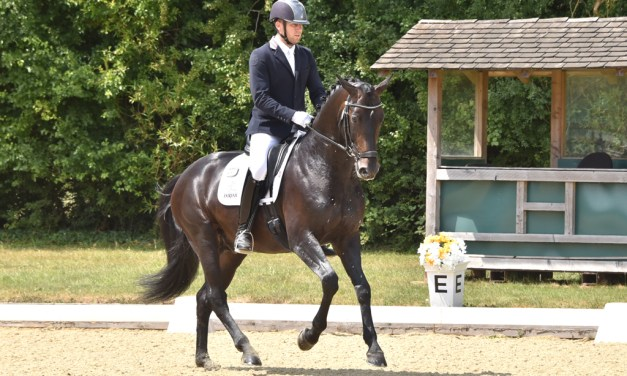 Dressage results: Merrist Wood, Surrey, 14 October