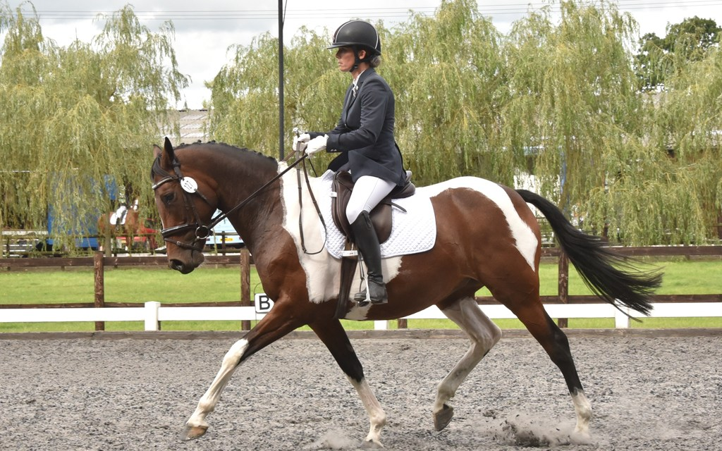Dressage results: Eaglesfield, Kent, 6 November