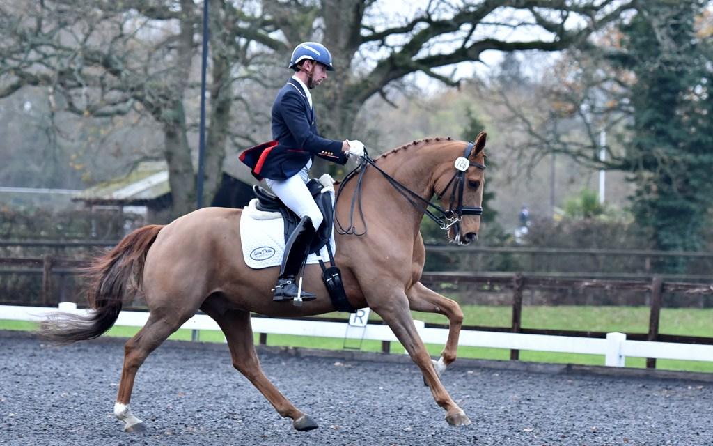Dressage results: Oldencraig, Surrey, 23 November