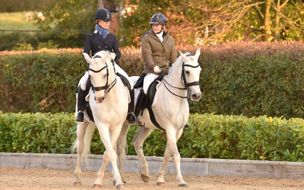 Dressage results: Step Aside (Belmoredean), West Sussex, 1 November
