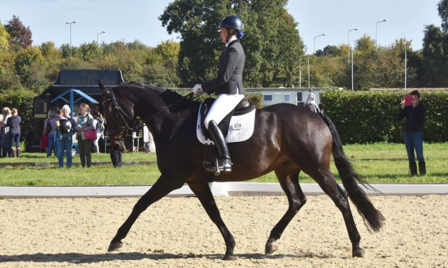 Dressage results: Blue Barn, Kent, 24 November