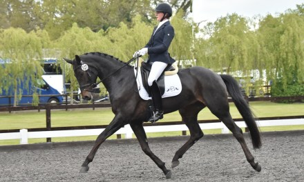 Dressage results: Oldencraig, Surrey, 14 December