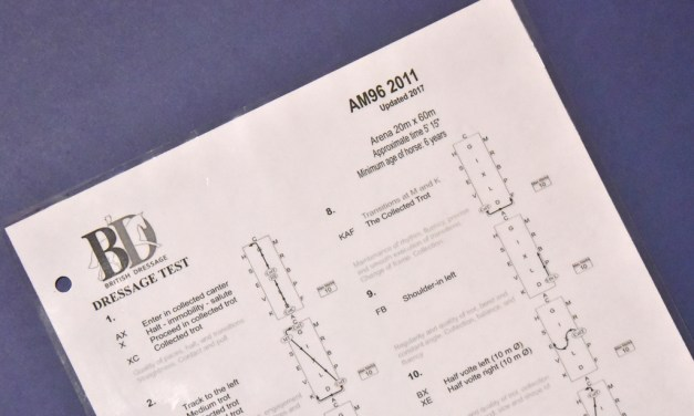 Advanced medium 96 (2011) analysed
