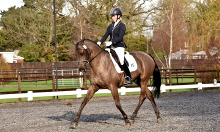 Dressage results: Petley Wood, East Sussex, 27 January