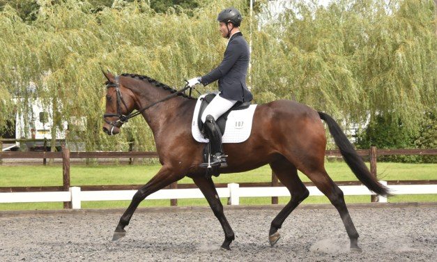 Dressage results: Oldencraig, Surrey, 15 February