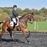 Building an unqualified success in dressage — 2