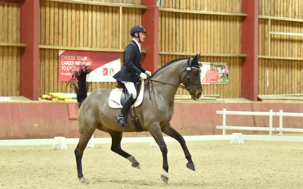 Dressage results: Oldencraig, Surrey, 15 March
