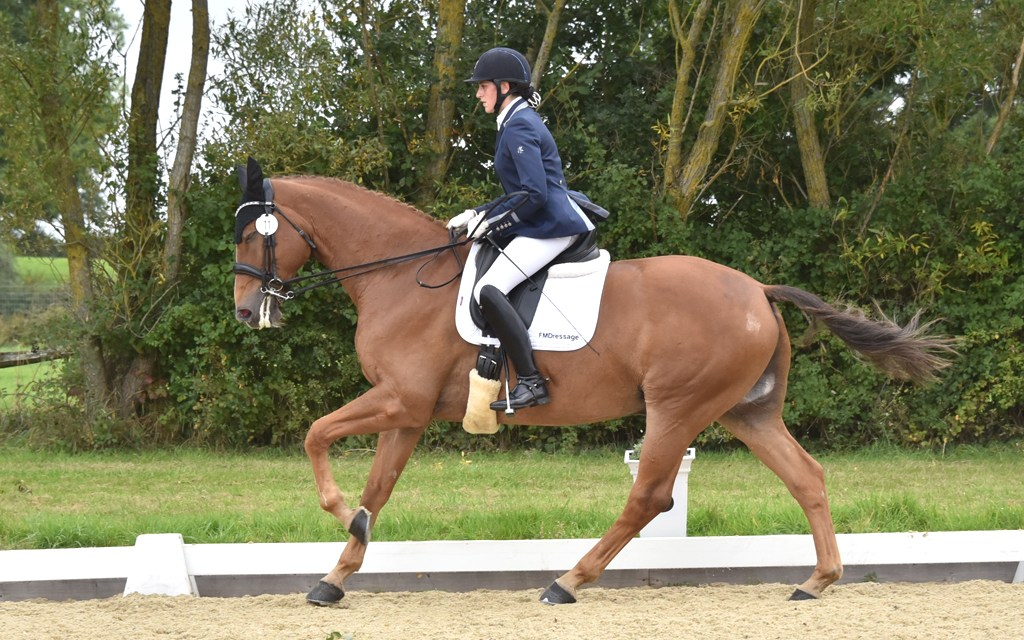 Dressage results: Step Aside (Belmoredean), West Sussex, 23 March