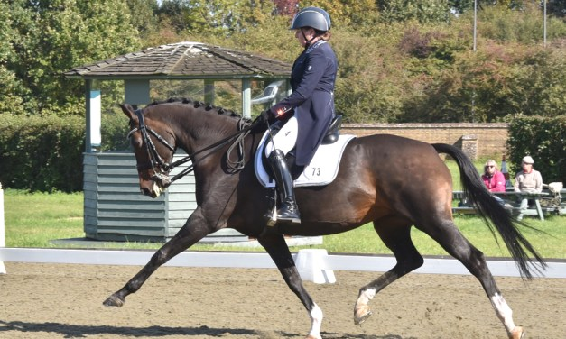 Dressage results: Step Aside (Belmoredean), West Sussex 28 February 2019