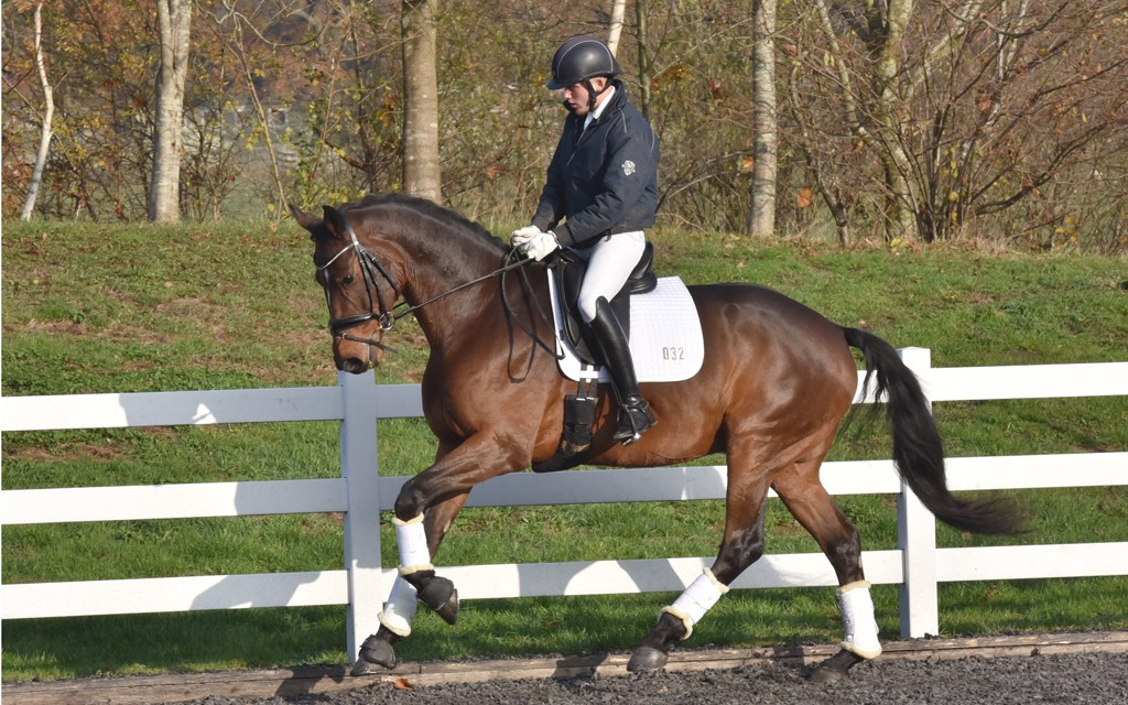 Dressage results: Hadlow College, Kent, 28 April 2019 - Out