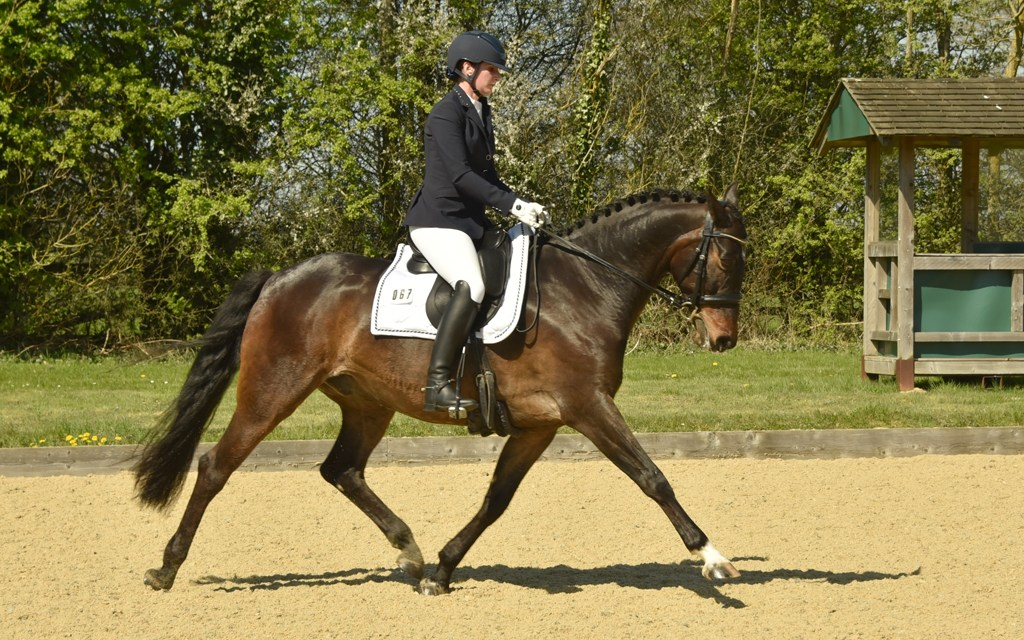 Dressage results: Parwood, Surrey, 27 April 2019