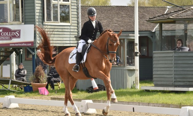 Hickstead hosts parade of new dressage talent