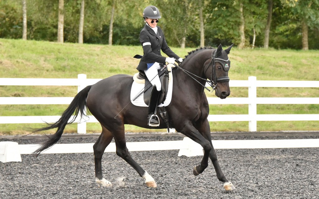 Dressage results: Blue Barn, Kent, 25 May 2019