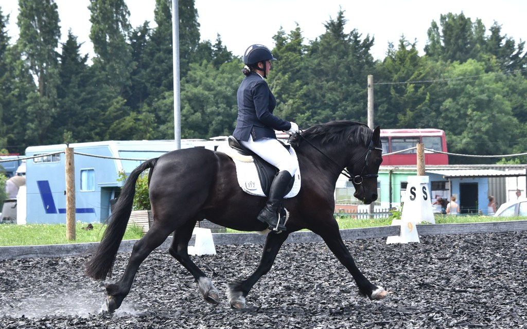 Dressage results: Saddlesdane, Kent, 12 May 2019