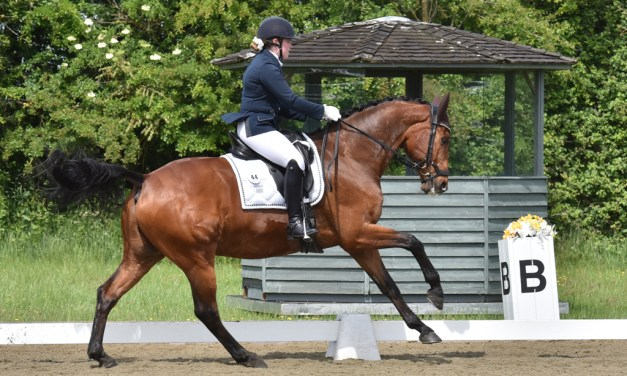 Dressage results: Brendon Stud, West Sussex, 14 & 15 June 2019