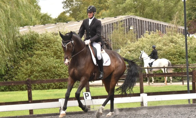 Dressage results: Oldencraig, Surrey, 7 June 2019