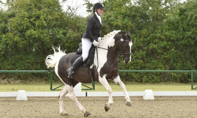 Dressage results: Hickstead DMC & Premier League, West Sussex, 19 June 2019