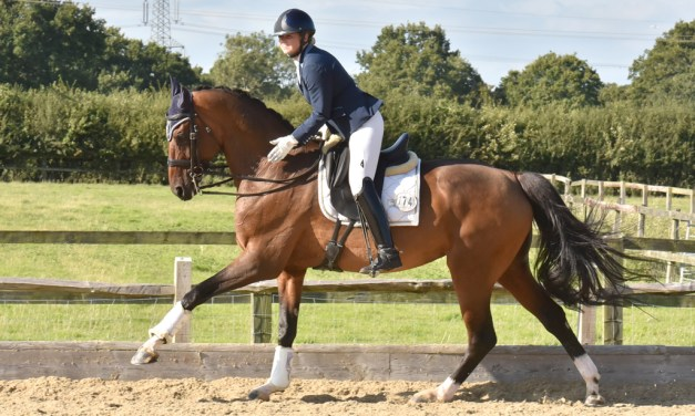 Just caught on the dressage scene at Step Aside (Belmoredean) 22 August 2019