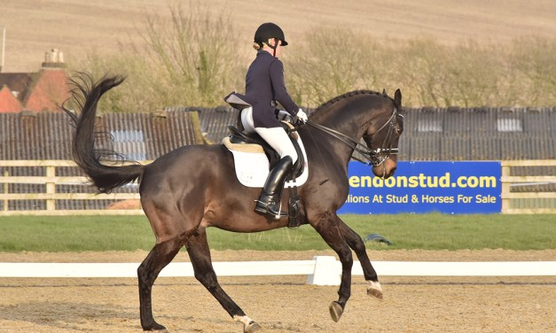 Dressage riders benchmark progress in fresh air and freedom