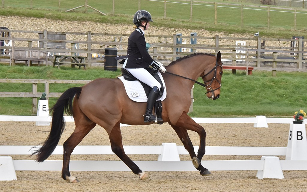Dressage results: Brendon, West Sussex, 14 March 2020