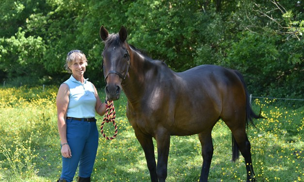 Sharon Edwards' Pipsqueak — the horse who made her