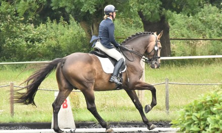 Dressage results: Petley Wood, East Sussex, 2 August 2020