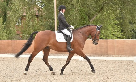 Dressage results: Pachesham, Surrey, 13 September 2020