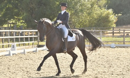 Dressage results: Parwood, Surrey, 19 September 2020