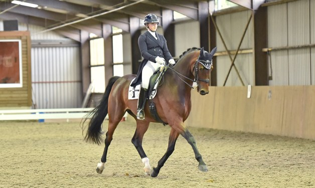 Belmoredean returns to the dressage calendar with quality and variety