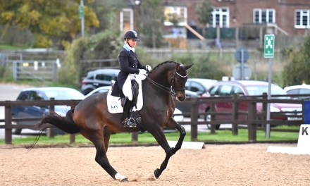 Dressage results: Sparsholt, Hants, 17 October 2020