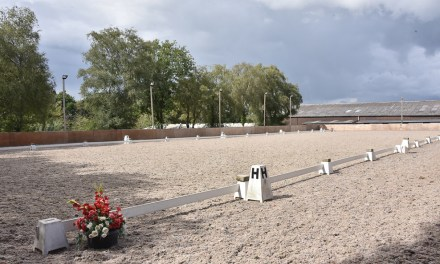 Dressage results: Felbridge, Surrey, 23 October 2020