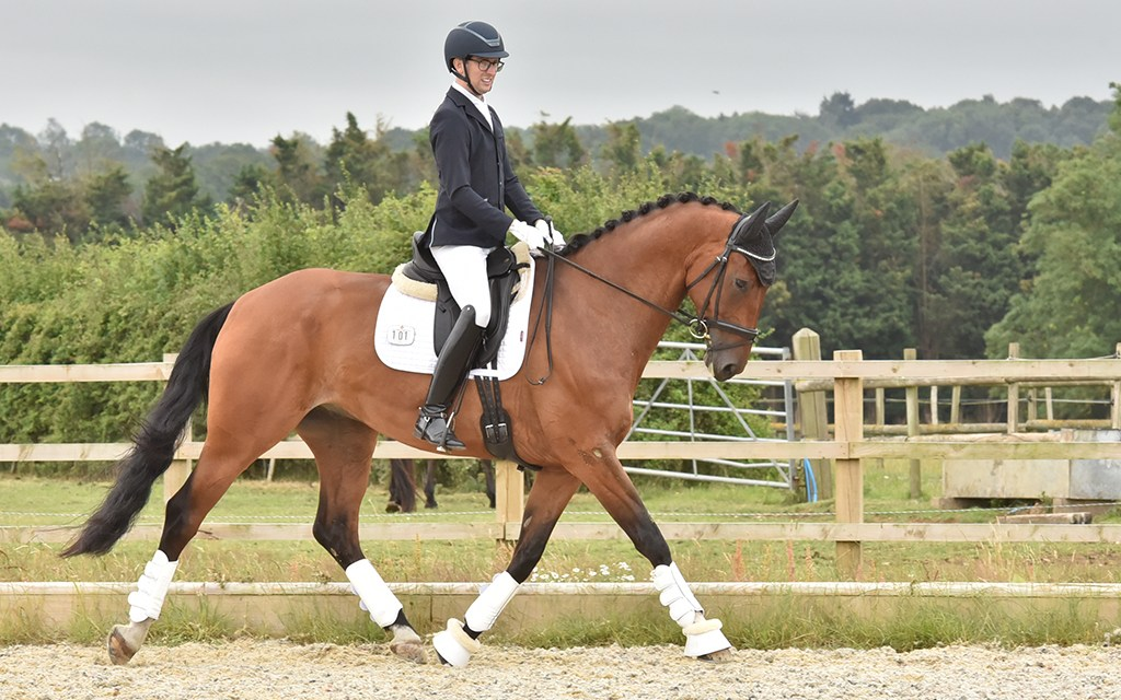 Dressage results: Speedgate, Kent, 27 October 2020
