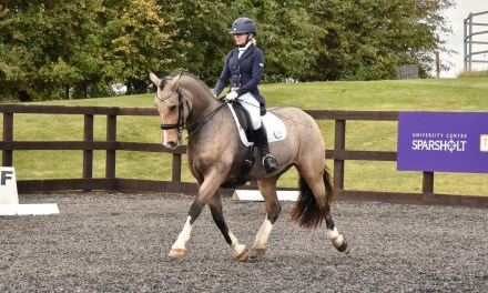 Dressage results: Sparsholt, Hants, 1 November 2020