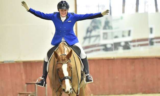 """""""We need re-regionalised dressage competitions and viable venues"""" survey update"""