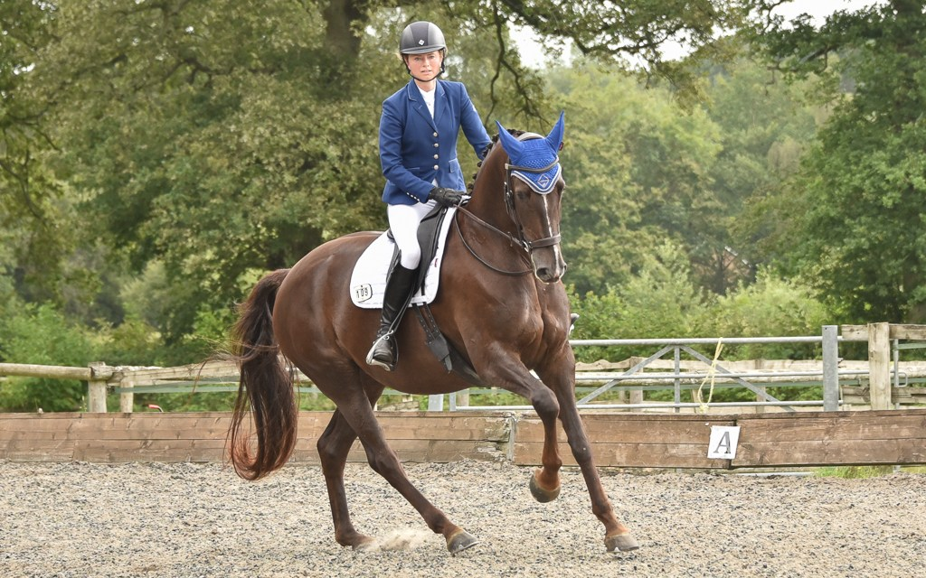 Dressage riders rise to the challenge of producing their own young horses