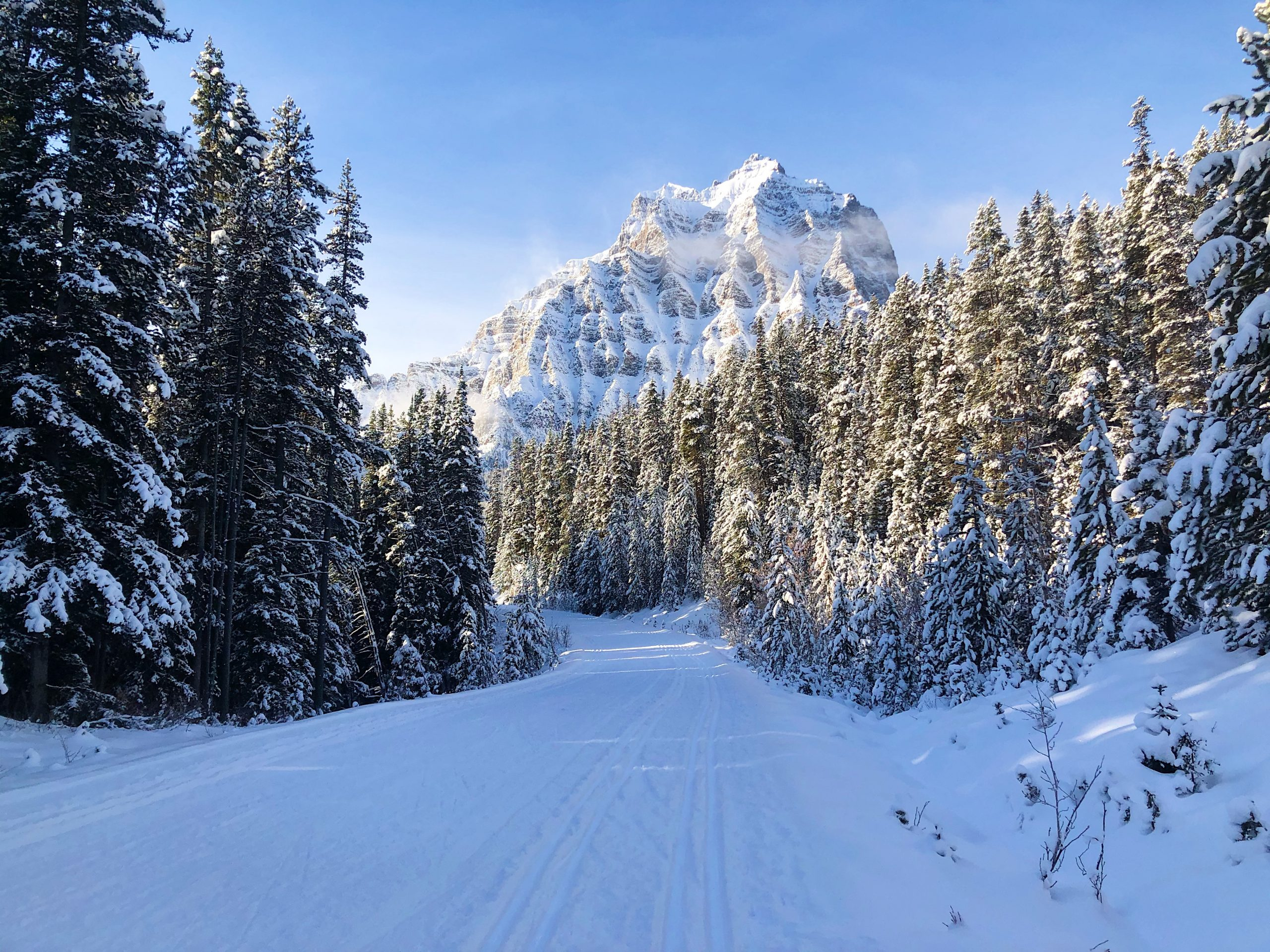 XC Skiing Moraine Lake Road in Banff National Park (Perfect For Beginners!) via @outandacross