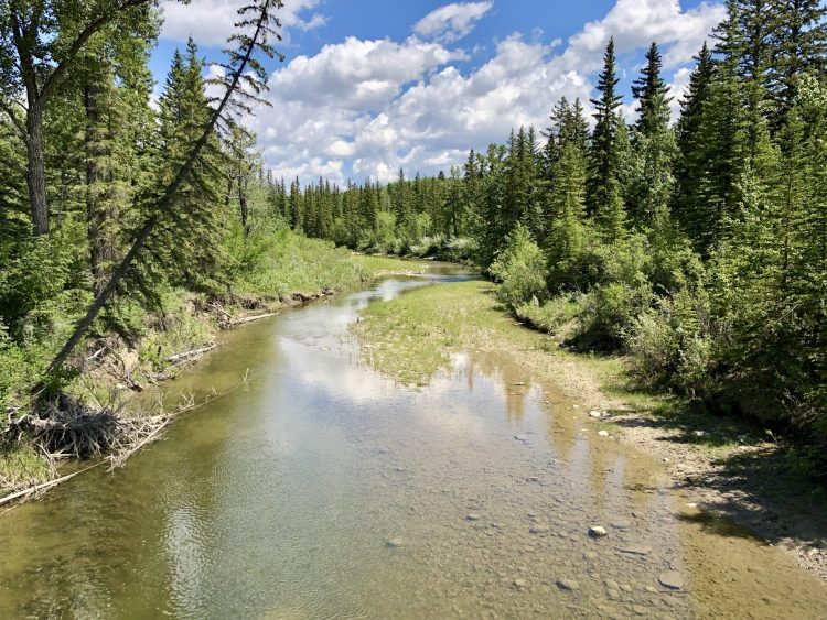 Fish Creek Provincial Park in Calgary