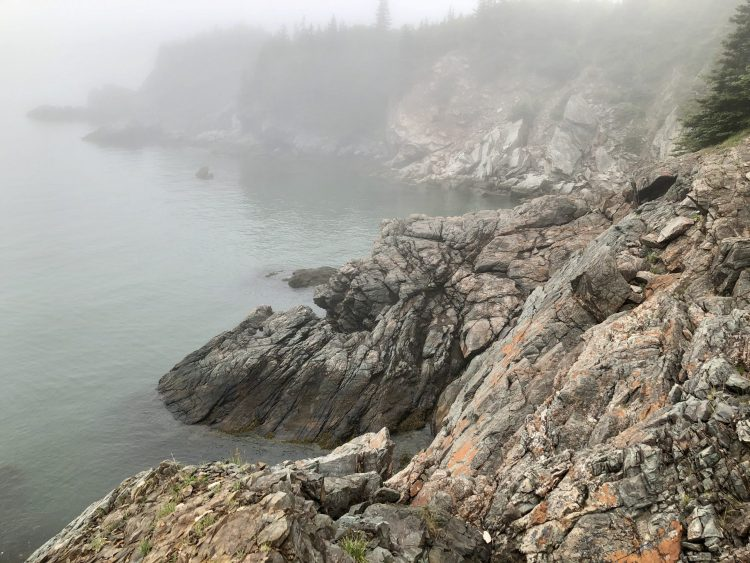 Rocky Bay of Fundy shores in New Brunswick