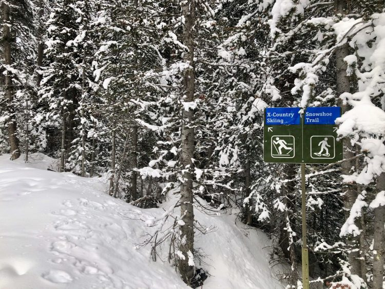 Signs on the Chester Lake trail