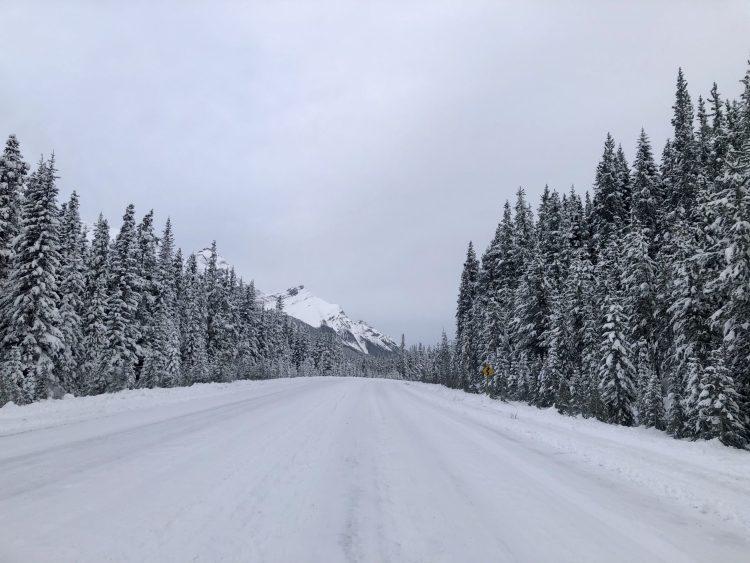 The Smith-Dorrien Trail