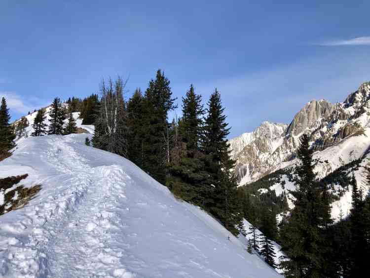 king-creek-ridge-hike-trail-kananaskis