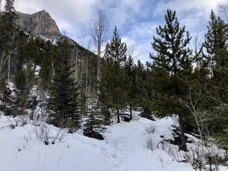 The Lake Minnewanka hike leads to Alymer Lookout