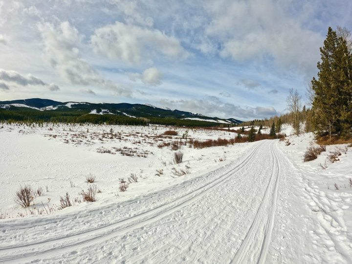 Beautiful West Bragg Creek trails