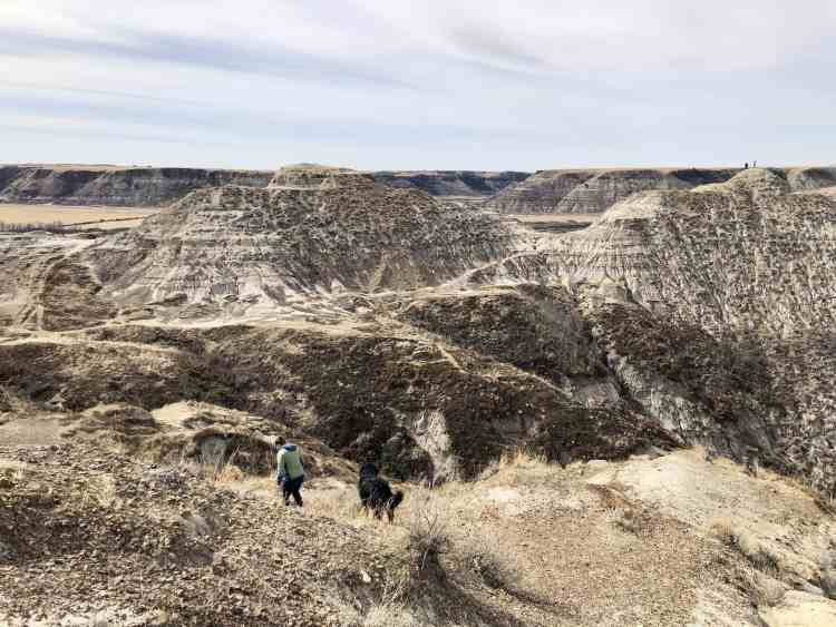 Horsethief Canyon in the Canadian Badlands